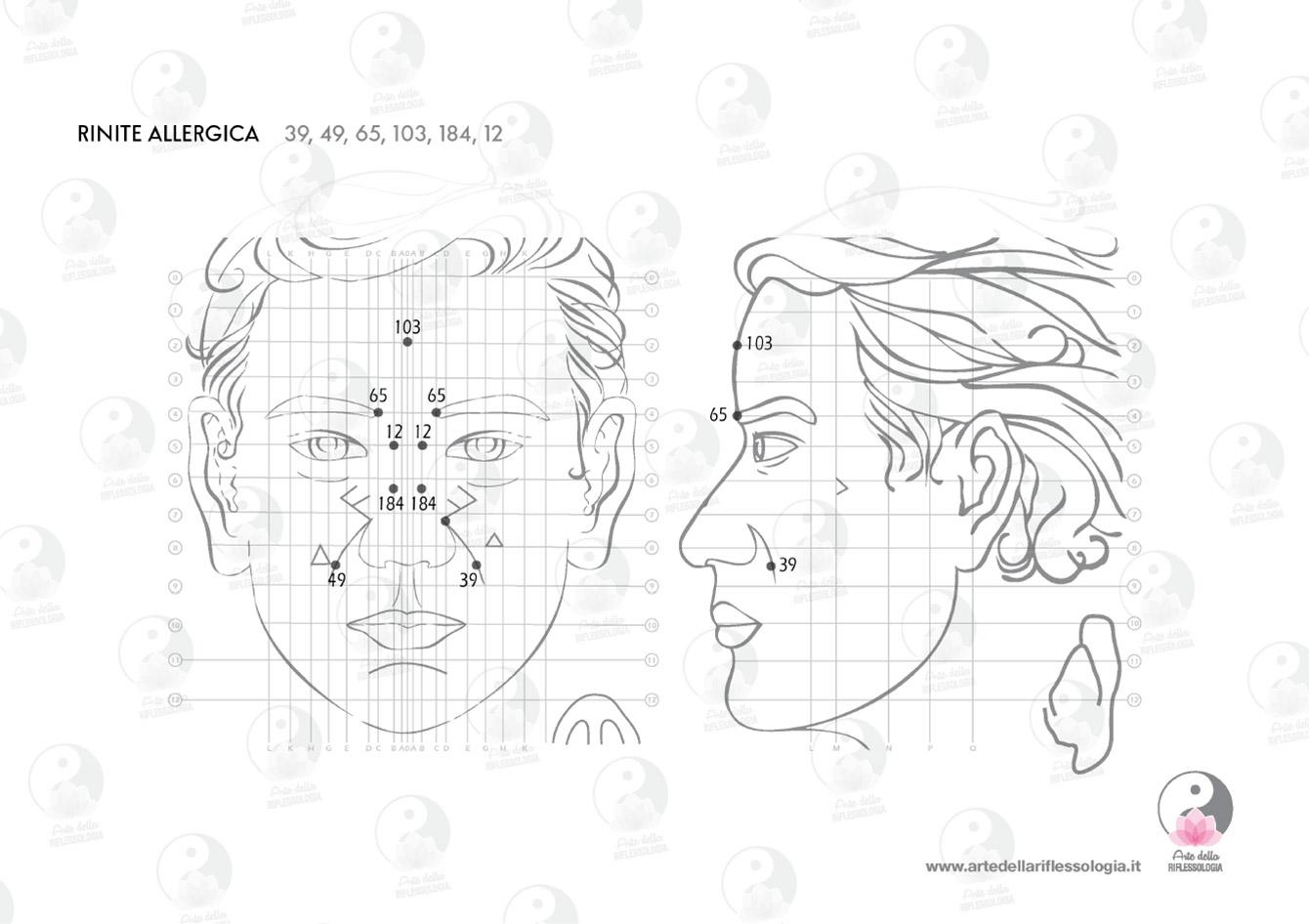Schemi di Riflessologia Dien Chan: RINITE ALLERGICA